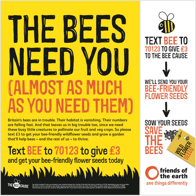 A packet of seeds inspires donors to give cash and then grow plants to support bees. Image copyright: Open
